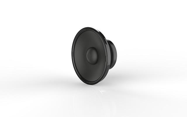 Round Shape Speaker Driver